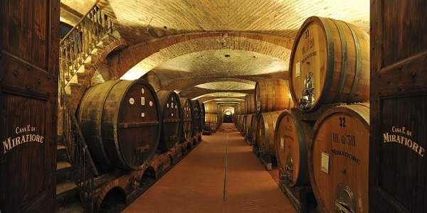 THE BAROLO WINE ROUTE